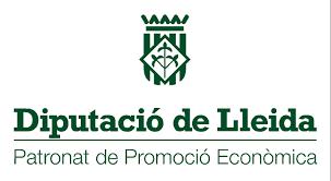 Enquesta efectes del COVID-19 al Teixit empresarial de les Terres de Lleida, Pirineu i Aran
